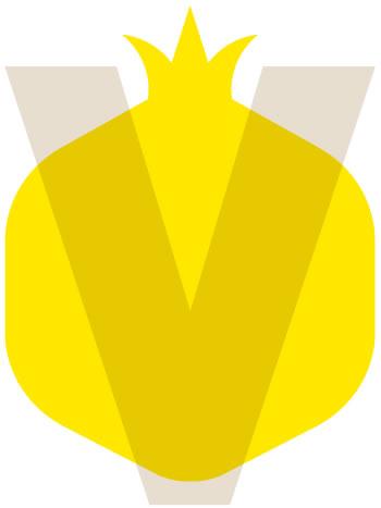 icona-valori