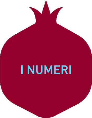 numeri-icona